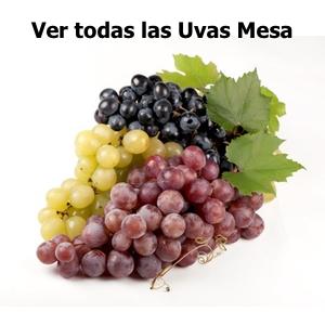 Ver todas las uvas de MESA